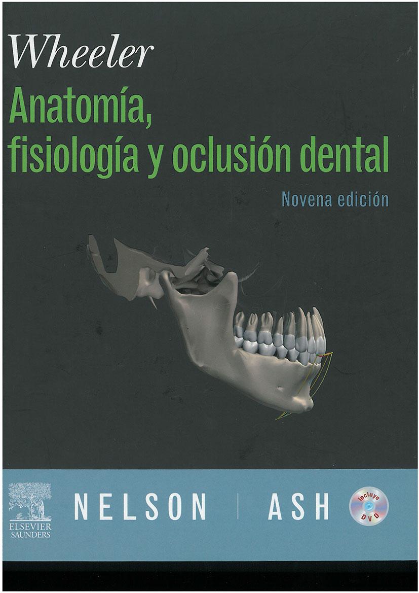 WHEELER. ANATOMÍA, FISIOLOGÍA Y OCLUSIÓN DENTAL | Colegio de ...