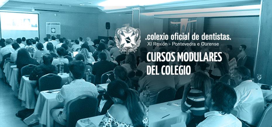 El Colegio Pone En Marcha La Tercera Edición De Sus Cursos Modulares